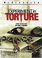 Experiment in Torture