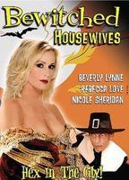 Bewitched Housewives