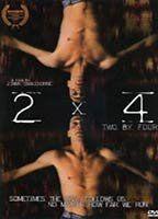 2 x 4