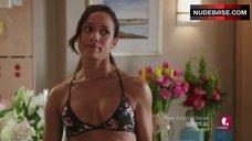 Dania Ramirez in Bikini Bra – Devious Maids