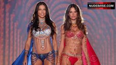 2. Adriana Lima Shows Shine Lingerie – The Victoria'S Secret Fashion Show 2014