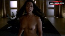 2. Janina Gavankar Full Nude – True Blood