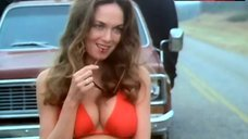 Catherine Bach in Red Bikini – The Dukes Of Hazzard